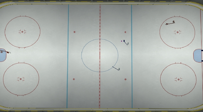Rink top down view